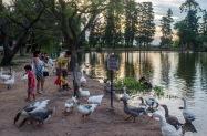 Parque Gazzano - Paraná - Foto: Gustavo Roger Cabral 2019